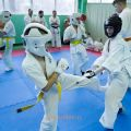 Боевая тренировка киокусинкай в Лицее 9 города Волгограда 15