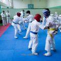 Боевая тренировка киокусинкай в Лицее 9 города Волгограда 13