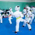Боевая тренировка киокусинкай в Лицее 9 города Волгограда 3