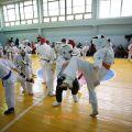 Боевая тренировка с каратистами города Волжского 20