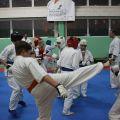 Мастер-класс в Федерации Киокушинкай Волгоградской области karatedoma 5