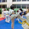 Мастер-класс в Федерации Киокушинкай Волгоградской области karatedoma 7