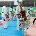 Мастер-класс в Федерации Киокушинкай Волгоградской области karatedoma 2