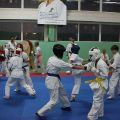 Мастер-класс в Федерации Киокушинкай Волгоградской области karatedoma 1