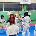 Мастер-класс в Федерации Киокушинкай Волгоградской области urakenru 63
