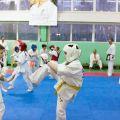 Мастер-класс в Федерации Киокушинкай Волгоградской области urakenru 59