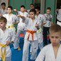 Мастер-класс в Федерации Киокушинкай Волгоградской области март 2020 48