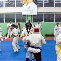 Мастер-класс в Федерации Киокушинкай Волгоградской области urakenru 65