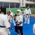 Мастер-класс в Федерации Киокушинкай Волгоградской области urakenru 62