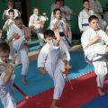 Мастер-класс в Федерации Киокушинкай Волгоградской области март 2020 56