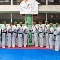Мастер-класс в Федерации Киокушинкай Волгоградской области karatedoma 9
