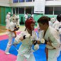 Мастер-класс в Федерации Киокушинкай Волгоградской области karatedoma 4