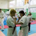 Мастер-класс в Федерации Киокушинкай Волгоградской области urakenru 53