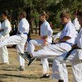 Общая тренировка карате шинкиокушин уракен на Мамаевом Кургане 15
