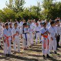 Общая тренировка карате шинкиокушин уракен на Мамаевом Кургане 9