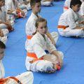 Экзамен на пояс карате киокусинкай в лицее 9 Волгограда 22