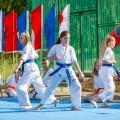 Показательные выступления каратистов Федерации Уракен Карате на открытии НОВОЙ спортивной площадки Лицея 9 21