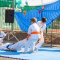 Показательные выступления каратистов Федерации Уракен Карате на открытии НОВОЙ спортивной площадки Лицея 9 46