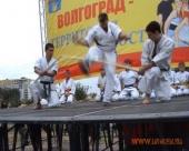 Выступление Волгоградской Ассоциации Киокусинкай карате на фестивале Волгоград - территория юности (рис.1)