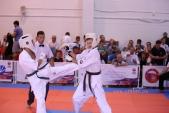 Всероссийские соревнования по киокусинкай в рамках 11-х открытых Всероссийских юношеских Игр боевых  (рис.10)