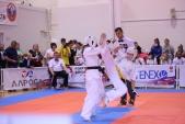 Всероссийские соревнования по киокусинкай в рамках 11-х открытых Всероссийских юношеских Игр боевых  (рис.12)