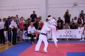 Всероссийские соревнования по киокусинкай в рамках 11-х открытых Всероссийских юношеских Игр боевых  (рис.16)