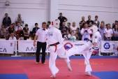 Всероссийские соревнования по киокусинкай в рамках 11-х открытых Всероссийских юношеских Игр боевых  (рис.17)