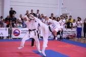 Всероссийские соревнования по киокусинкай в рамках 11-х открытых Всероссийских юношеских Игр боевых  (рис.18)