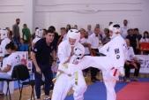 Всероссийские соревнования по киокусинкай в рамках 11-х открытых Всероссийских юношеских Игр боевых  (рис.19)