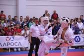 Всероссийские соревнования по киокусинкай в рамках 11-х открытых Всероссийских юношеских Игр боевых  (рис.23)