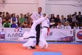 Всероссийские соревнования по киокусинкай в рамках 11-х открытых Всероссийских юношеских Игр боевых  (рис.25)