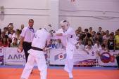 Всероссийские соревнования по киокусинкай в рамках 11-х открытых Всероссийских юношеских Игр боевых  (рис.30)