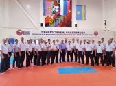 Всероссийские соревнования по киокусинкай в рамках 11-х открытых Всероссийских юношеских Игр боевых  (рис.38)