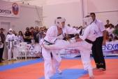 Всероссийские соревнования по киокусинкай в рамках 11-х открытых Всероссийских юношеских Игр боевых  (рис.4)