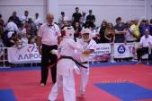 Всероссийские соревнования по киокусинкай в рамках 11-х открытых Всероссийских юношеских Игр боевых  (рис.7)