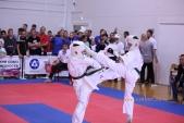 Всероссийские соревнования по киокусинкай в рамках 11-х открытых Всероссийских юношеских Игр боевых  (рис.8)