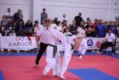 Всероссийские соревнования по киокусинкай в рамках 11-х открытых Всероссийских юношеских Игр боевых  (рис.9)