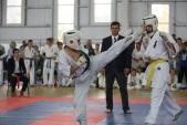 Чемпионат и Первенство Волгоградской области по Кекусинкай по кумитэ (рис.17)