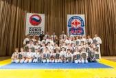 Первенство Гран-При по Киокусинкай в дисциплинах: кумитэ, ката и тамешивари