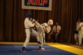 Первенство Гран-При по Киокусинкай в дисциплинах: кумитэ, ката и тамешивари (рис.10)