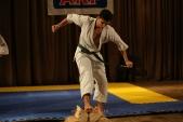 Первенство Гран-При по Киокусинкай в дисциплинах: кумитэ, ката и тамешивари (рис.11)