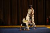Первенство Гран-При по Киокусинкай в дисциплинах: кумитэ, ката и тамешивари (рис.14)