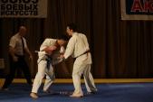 Первенство Гран-При по Киокусинкай в дисциплинах: кумитэ, ката и тамешивари (рис.15)