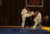 Первенство Гран-При по Киокусинкай в дисциплинах: кумитэ, ката и тамешивари (рис.16)