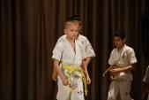 Первенство Гран-При по Киокусинкай в дисциплинах: кумитэ, ката и тамешивари (рис.18)