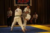 Первенство Гран-При по Киокусинкай в дисциплинах: кумитэ, ката и тамешивари (рис.2)