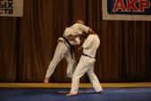 Первенство Гран-При по Киокусинкай в дисциплинах: кумитэ, ката и тамешивари (рис.24)