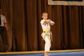 Первенство Гран-При по Киокусинкай в дисциплинах: кумитэ, ката и тамешивари (рис.4)