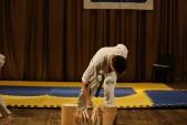 Первенство Гран-При по Киокусинкай в дисциплинах: кумитэ, ката и тамешивари (рис.7)