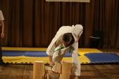 Первенство Гран-При по Киокусинкай в дисциплинах: кумитэ, ката и тамешивари (рис.8)